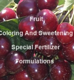 Fruit Coloring And Sweetening Functional Fertilizer Formulation And Production Process